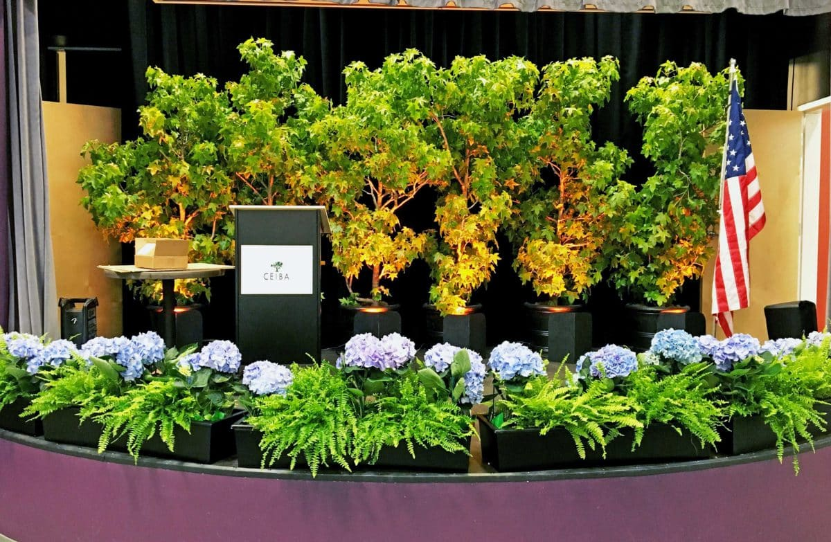Eventscapes Plant Rental And Trade Shows 07