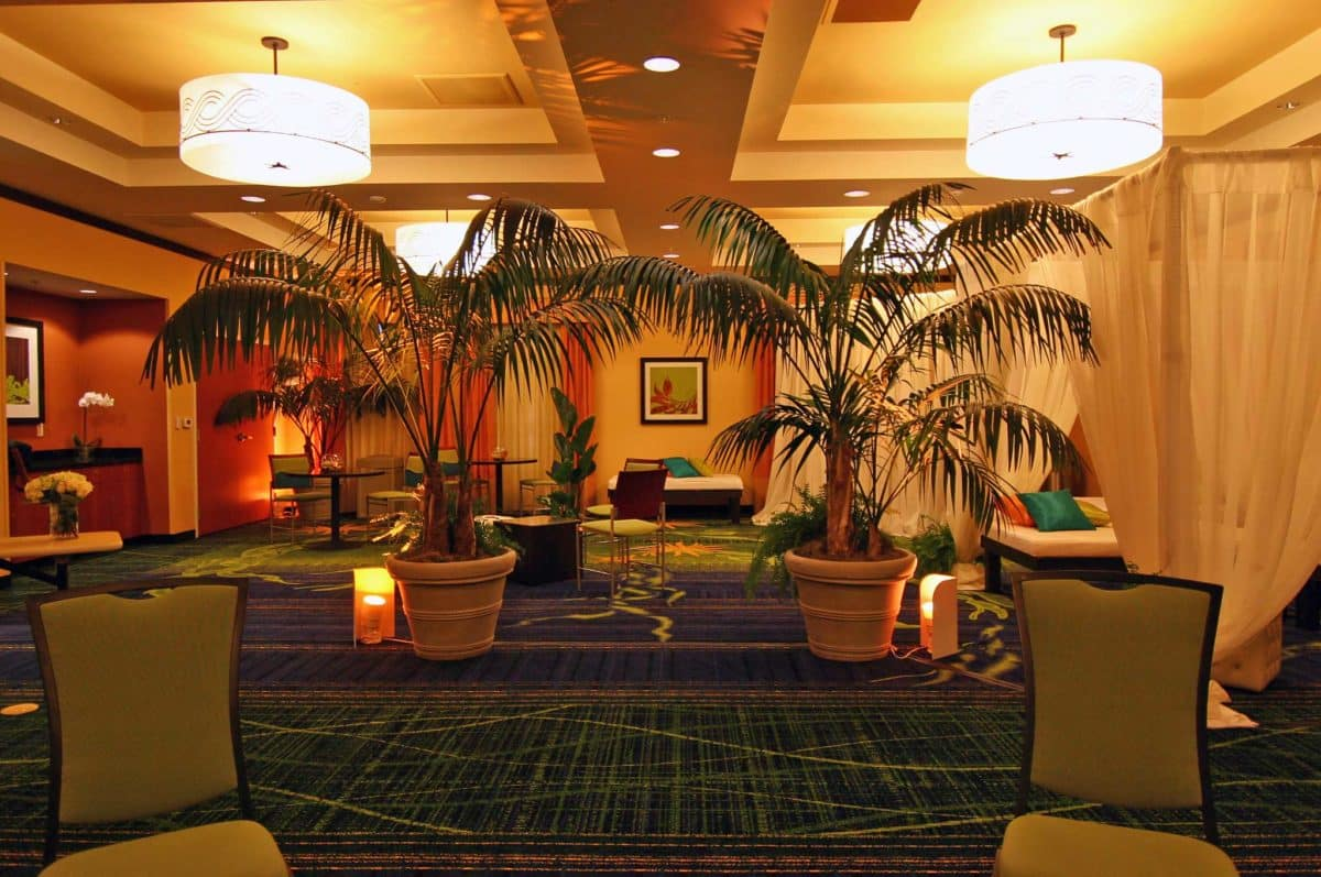 Eventscapes Plant Rental And Trade Shows 18