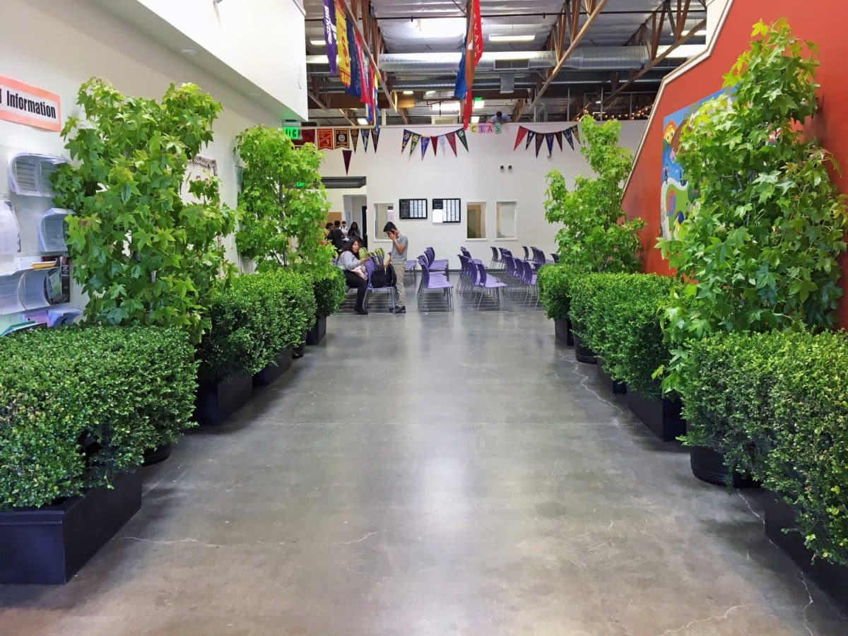 Eventscapes Plant Rental And Trade Shows 31